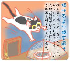 猫 の ことわざ